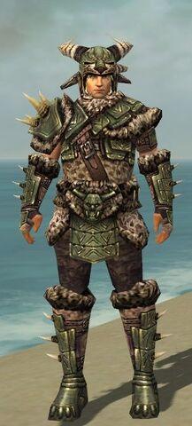 File:Warrior Elite Charr Hide Armor M gray front.jpg