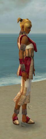 File:Monk Vabbian Armor F dyed side.jpg