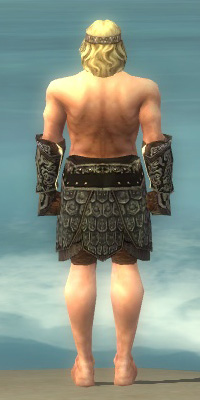 File:Warrior Canthan Armor M gray arms legs back.jpg