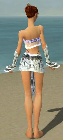 File:Elementalist Elite Iceforged Armor F gray arms legs back.jpg
