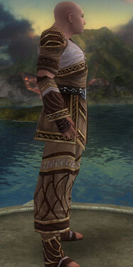 Monk Elite Canthan Armor M gray side alternate