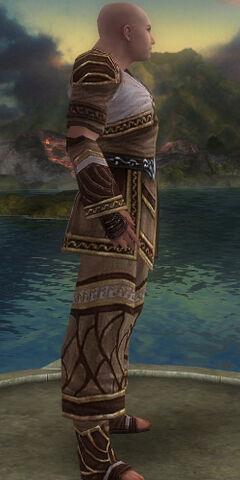 File:Monk Elite Canthan Armor M gray side alternate.jpg