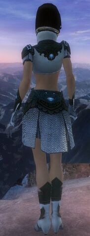 File:Paragon Monument armor F gray back old.jpg