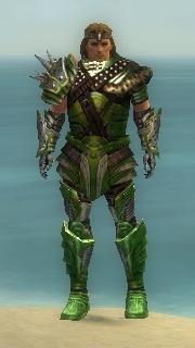 Warrior Deldrimor Armor M dyed front