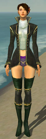File:Mesmer Tyrian Armor F gray chest feet front.jpg