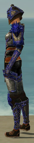 File:Warrior Elite Canthan Armor F dyed side.jpg