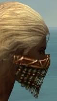 File:Ranger Elite Luxon Armor M dyed head side.jpg