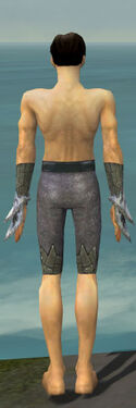 Elementalist Iceforged Armor M gray arms legs back