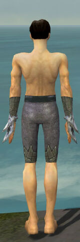 File:Elementalist Iceforged Armor M gray arms legs back.jpg