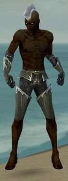 Necromancer Tyrian Armor M gray arms legs front