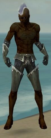 File:Necromancer Tyrian Armor M gray arms legs front.jpg