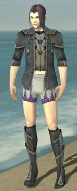 Elementalist Ascalon Armor M gray chest feet front