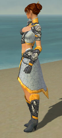 File:Elementalist Stoneforged Armor F dyed side.jpg