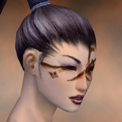 File:Necromancer Norn Armor F dyed head right.jpg