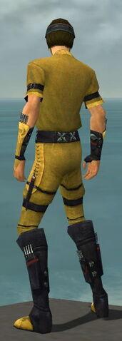 File:Assassin Shing Jea Armor M dyed back.jpg