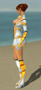 Elementalist Ascalon Armor F dyed side