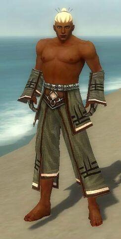 File:Monk Kurzick Armor M gray arms legs front.jpg
