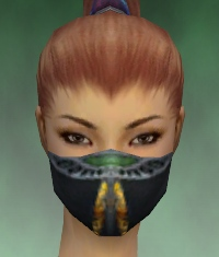 File:Assassin Exotic Armor F dyed head front.jpg