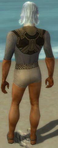 File:Dervish Asuran Armor M gray chest feet back.jpg
