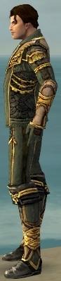 File:Mesmer Asuran Armor M gray side.jpg