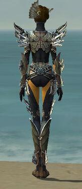 Assassin Asuran Armor F gray back
