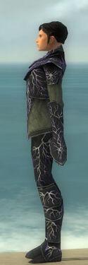 Elementalist Elite Stormforged Armor M gray side