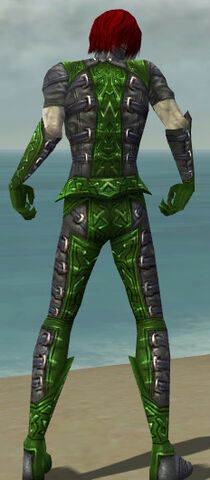 File:Necromancer Ascalon Armor M dyed back.jpg