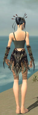 Necromancer Elite Cabal Armor F gray arms legs back