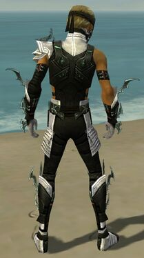 Assassin Elite Luxon Armor M dyed back