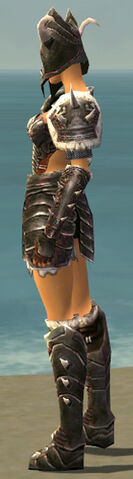File:Warrior Norn Armor F gray side.jpg