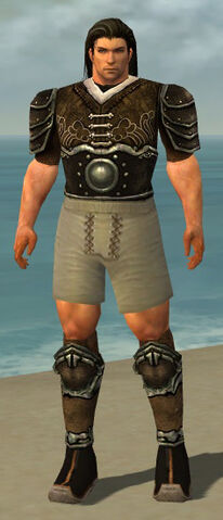 File:Warrior Shing Jea Armor M gray chest feet front.jpg