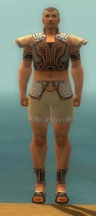File:Monk Asuran Armor M gray chest feet front.jpg