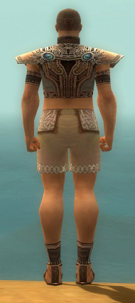 File:Monk Asuran Armor M gray chest feet back.jpg