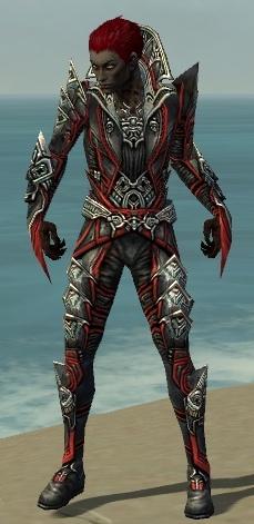File:Necromancer Monument Armor M dyed front.jpg