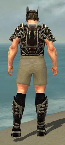 File:Warrior Ancient Armor M gray chest feet back.jpg