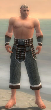 Monk Elite Judge Armor M gray arms legs front