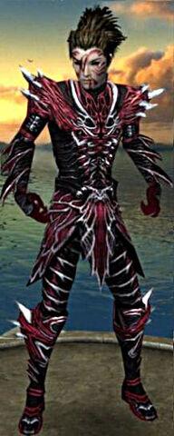 File:Necromancer Luxon Armor M gray front.jpg