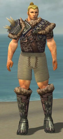 File:Warrior Charr Hide Armor M gray chest feet front.jpg
