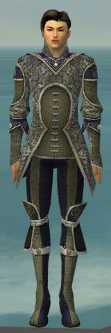 File:Elementalist Canthan Armor M gray front.jpg