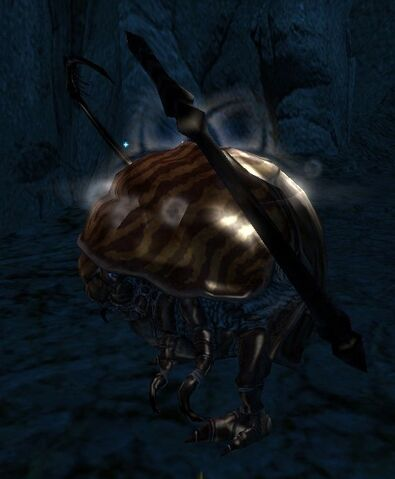 File:Thorn Beetle.jpg