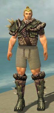 Warrior Elite Charr Hide Armor M gray chest feet front
