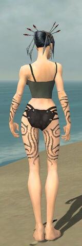 File:Necromancer Scar Pattern Armor F gray arms legs back.jpg
