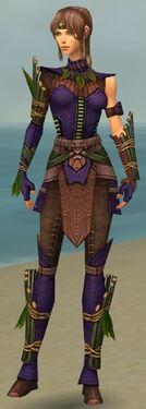 Ranger Druid Armor F dyed front