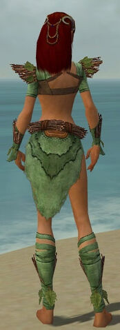 File:Ranger Elite Druid Armor F dyed back.jpg