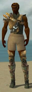 Ranger Tyrian Armor M gray chest feet front