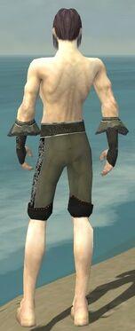Elementalist Elite Kurzick Armor M gray arms legs back