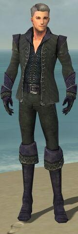 File:Mesmer Elite Elegant Armor M gray front.jpg