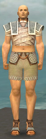File:Monk Woven Armor M gray chest feet front.jpg