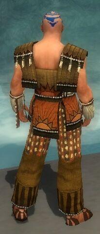 File:Monk Sunspear Armor M dyed back.jpg