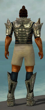Warrior Elite Sunspear Armor M gray chest feet back